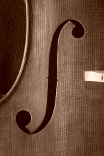 Cello_095