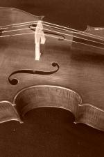 Cello_097