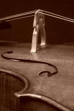 Cello_103